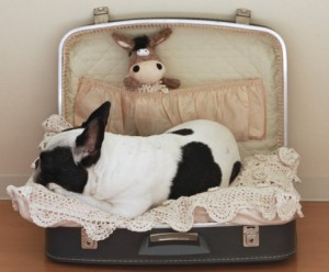 Easy-to-Craft-Doggie-Bed