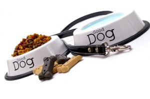 Dog care items, isolated on white background. Shallow focus on leash & water dish in foreground.